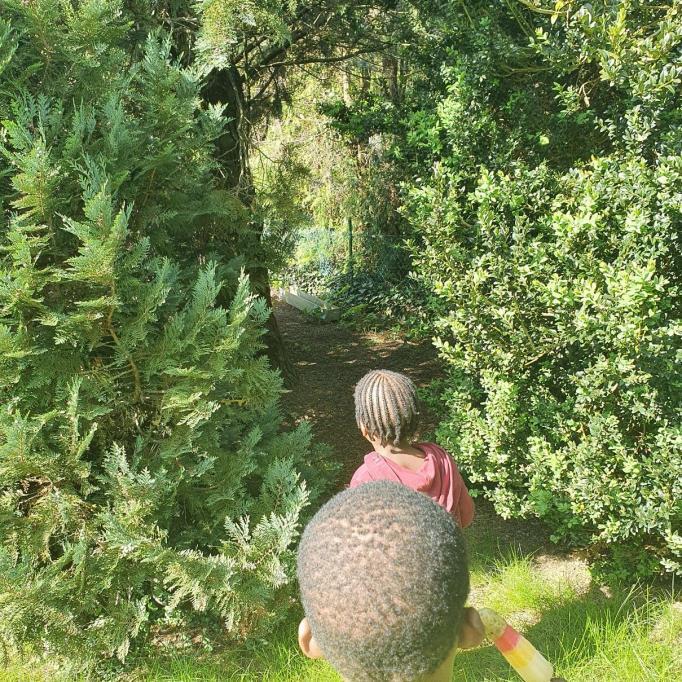 nelle stern nos arbres