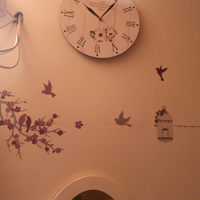 Nelle Stern Beauty Room