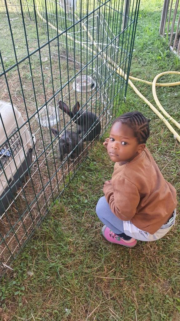 Dassi a egalement aimé les lapins. Elle disait quils sont mignons